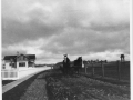 1910, Horses at Point Cabrillo