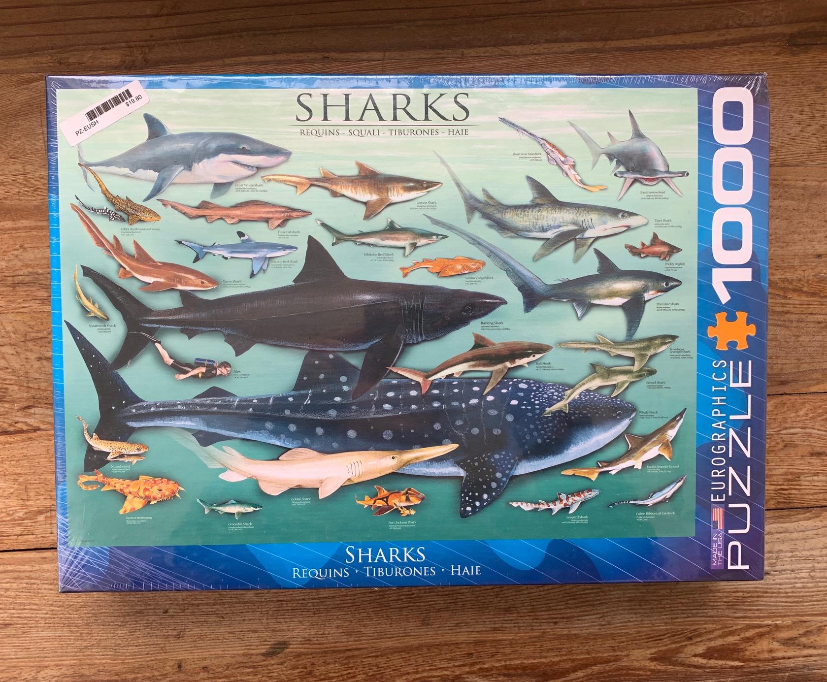 shark-1000-piece-puzzle-lighthouse