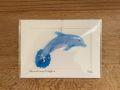 glass-dolphin-suncatcher