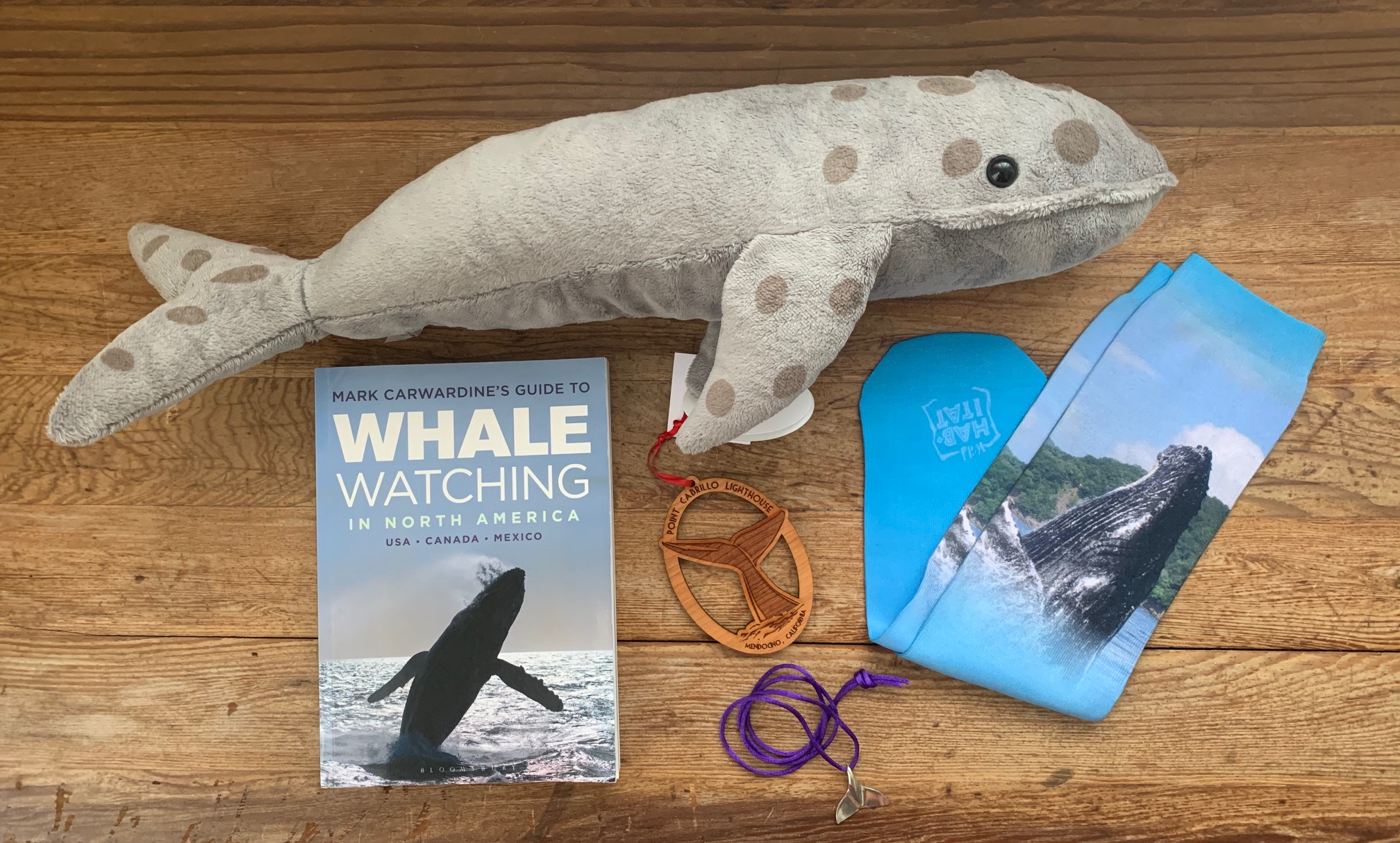 whale-watching-gift-shop-package